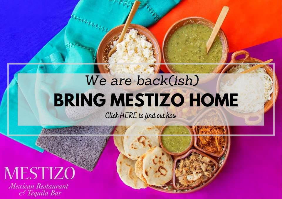 we-are-back-mestizo-banner